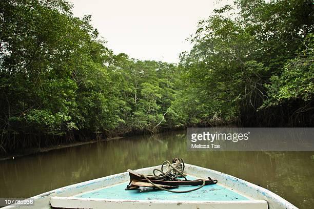 boat tour in tamarindo estuary, costa rica - playa tamarindo fotografías e imágenes de stock