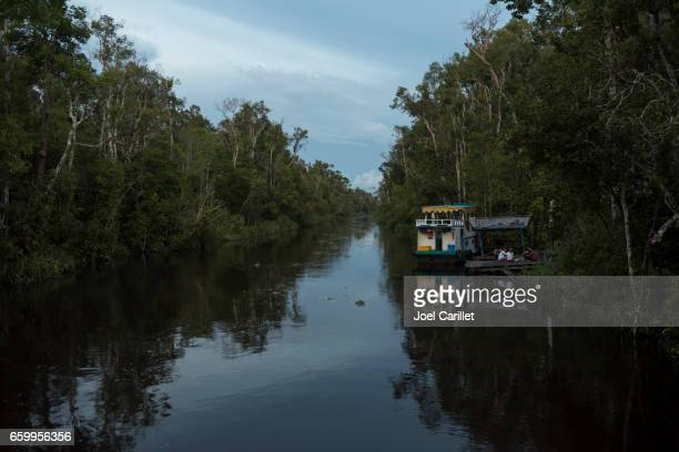 Boat trip in Tanjung Puting National Park, Borneo, Indonesia
