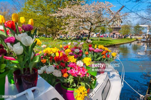 boat with flower pots at keukenhof gardens netherlands - keukenhof gardens stock pictures, royalty-free photos & images