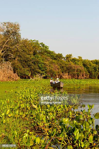 Boat with tourists on a tributary of the Cuiaba River near Porto Jofre in the northern Pantanal, Mato Grosso province in Brazil.