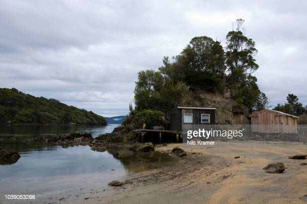 boathouses in halfmoon bay, steward island, new zealand - new zealand stockfoto's en -beelden
