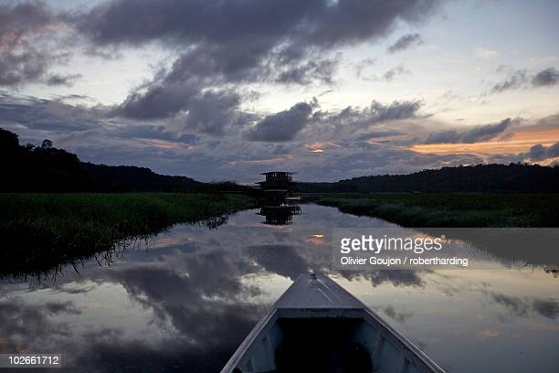 Boating and observing fauna and flora in the everglade area of Kaw, and floating lodge of the marsh in background, French Guiana, South America