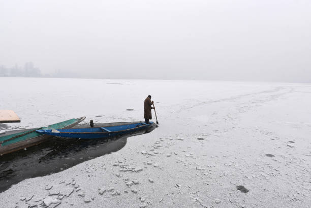 IND: Kashmir Receives Fresh Snowfall