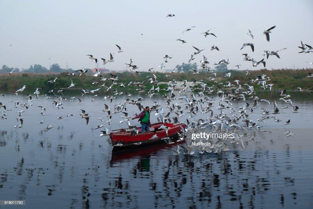 Pollution in New Delhi : News Photo