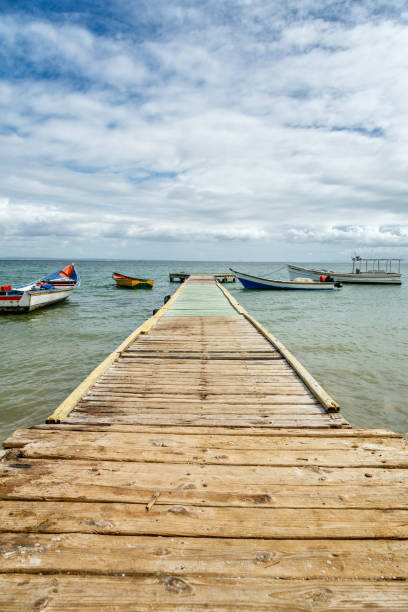 Boats anchored and the end of a wooden dock  on a sunny day