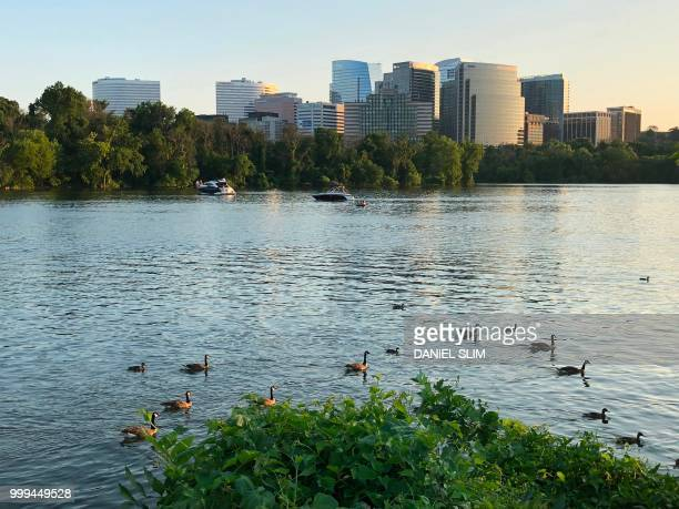 Boats and Canada geese are viewed along the Potomac River on July 14 2018 in WashingtonDC