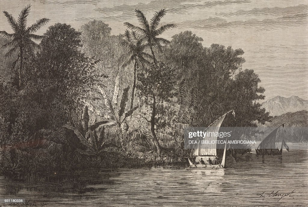 Boats and forest along the coast of Celebes island : News Photo