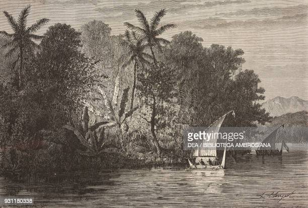 Boats and forest along the coast of Celebes island drawing by Hubert Clerget from The Malay Archipelago 18611862 by Alfred Russell Wallace from Il...