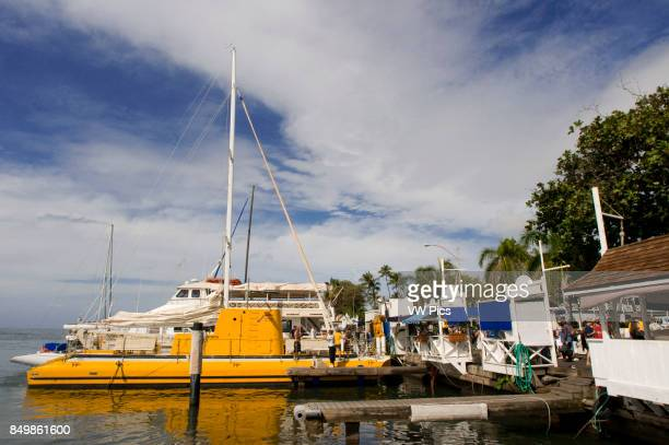 Boats and yellow submarine in the harbour of Lahaina Maui Hawaii