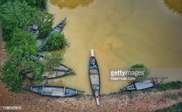 boats are waiting for customers in a swamp forest named ratargul in sylhet, bangladesh. - cypress swamp stock photos and pictures