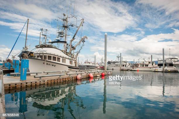 Boats docked in marina in Homer Alaska