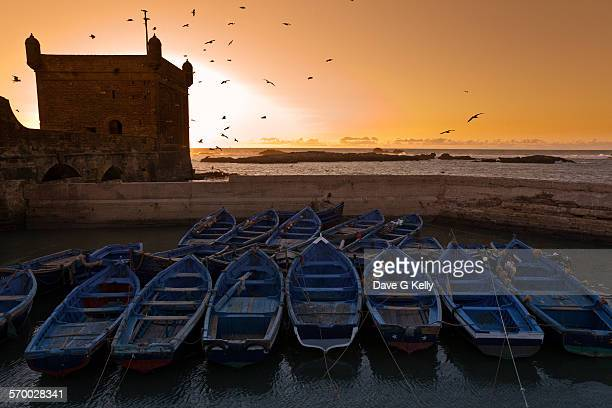 Boats docked in Port at Sunset, Essaouira, Morocco