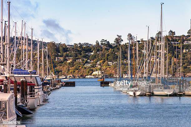 Boats docked in Sausalito