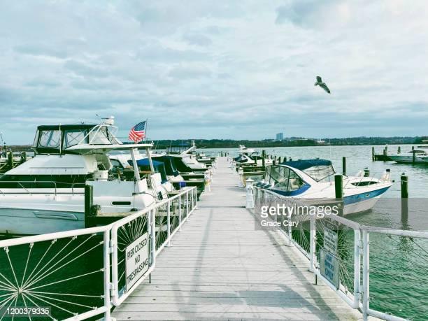 boats docked on waterfront - バージニア州 アレクサンドリア ストックフォトと画像