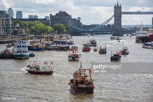 Boats from the 'Fishing for Leave' campaign group join a flotilla along the Thames River on June 15 2016 in London England The flotilla organised by...