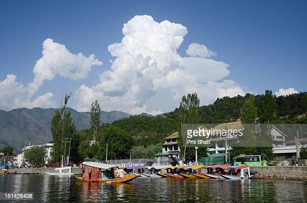 Boats in Dal Lake
