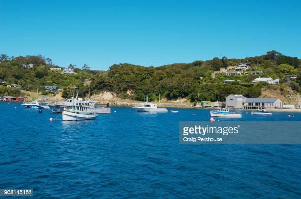Boats in Halfmoon Bay.