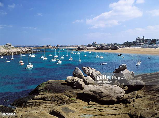 boats in harbor in tregastel, france - cotes d'armor stock photos and pictures