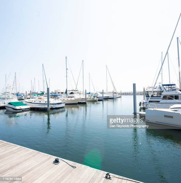boats in harbor - marina stock pictures, royalty-free photos & images