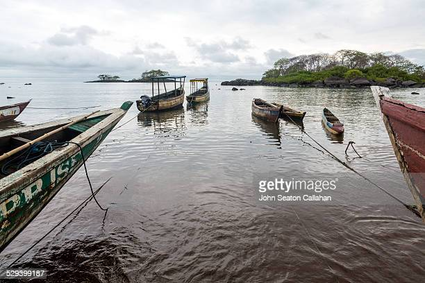boats in harbor - sierra leone stock pictures, royalty-free photos & images