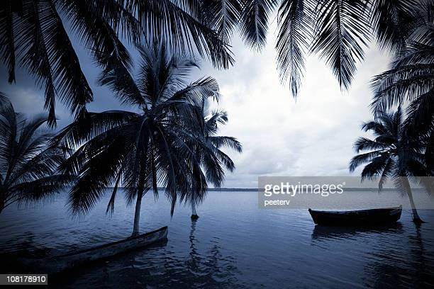 boats in lagoon with palm trees at dusk - dugout canoe stock photos and pictures