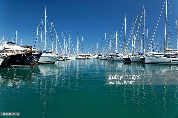 Boats in Marina, Harbour in French Riviera