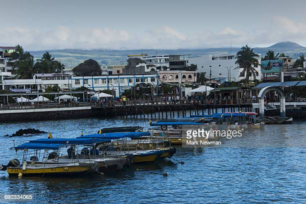 boats in puerto ayora, galapagos - puerto ayora stock pictures, royalty-free photos & images