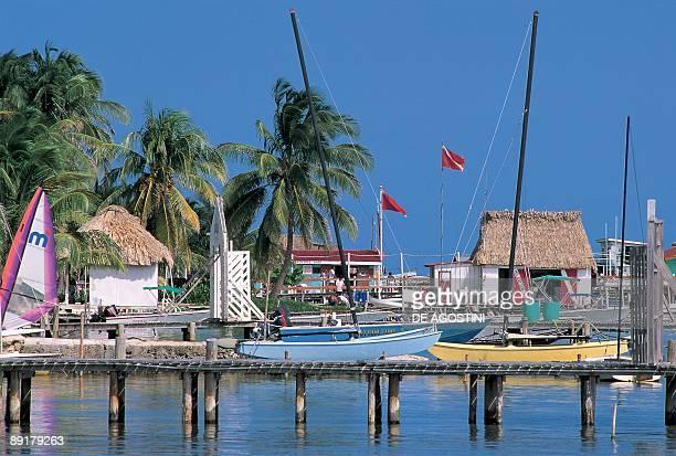 Boats moored at a marina San Pedro Ambergris Caye Belize