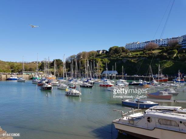 boats moored at harbor against clear sky - ilfracombe stock photos and pictures