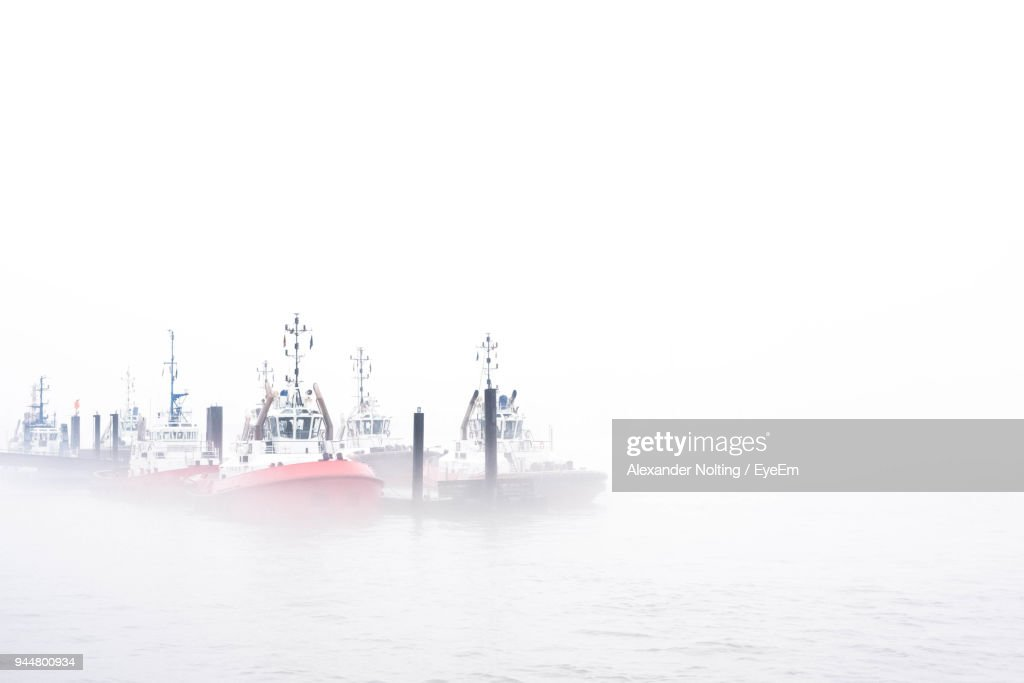 Boats Moored At Harbor Against Clear Sky : Stock Photo
