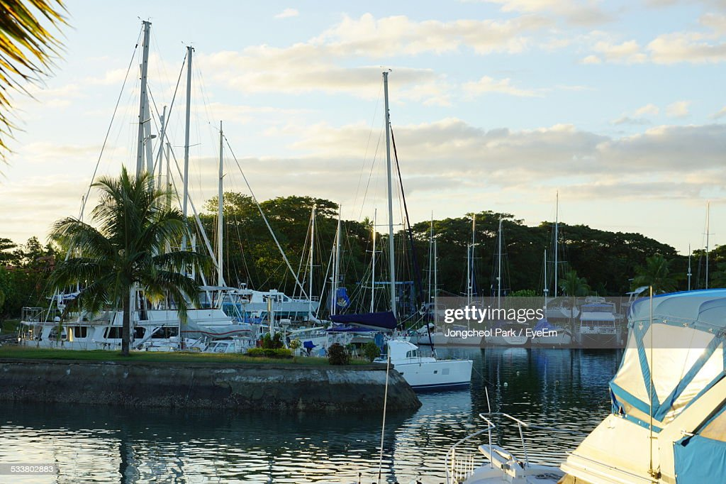 Boats Moored At Harbor : Stock Photo
