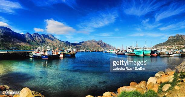 boats moored at harbor - constantia stock pictures, royalty-free photos & images