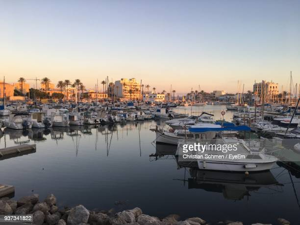 boats moored at harbor - palma majorca stock photos and pictures