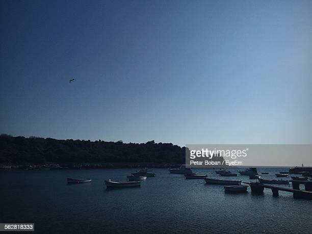 boats moored at sea against clear blue sky - boban stock pictures, royalty-free photos & images