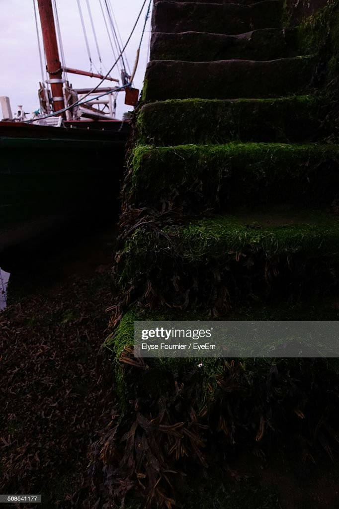 Boats Moored By Moss Covered Stairs : Stock Photo