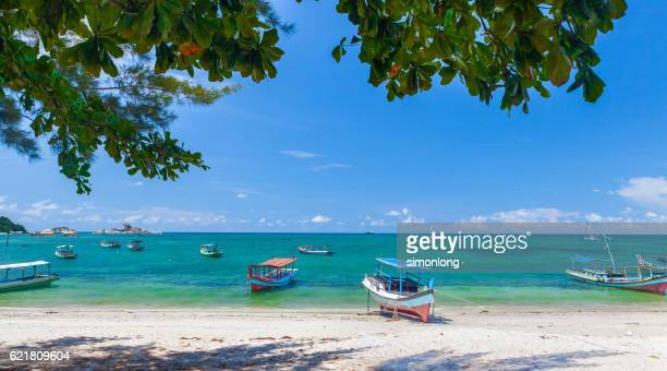 Boats Moored by the Shoreline in Indonesia