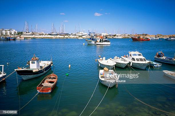 Boats moored in a harbour