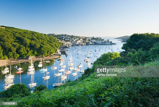 boats moored on pont pill with polruan and the river fowey in the distance, seen from the hall walk. cornwall. england. uk. - village stock pictures, royalty-free photos & images