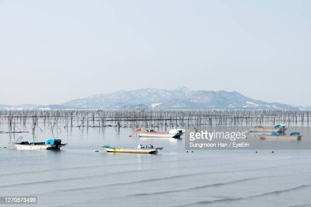 boats moored on sea against clear sky - gwangju stock pictures, royalty-free photos & images