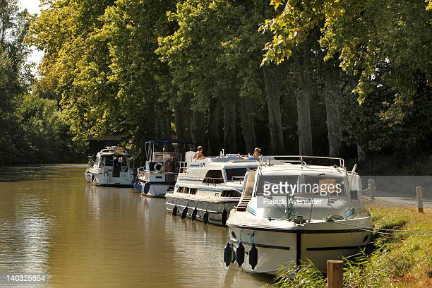 Boats moored on the Canal Du Midi on August 272011 in VilleneuvelesBeziersFrance The French government has decided to cut 42000 planes trees...