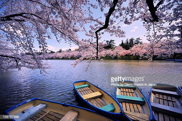 boats on moat - aomori prefecture stock pictures, royalty-free photos & images