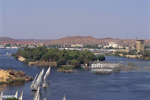 boats on river - aswan stock pictures, royalty-free photos & images