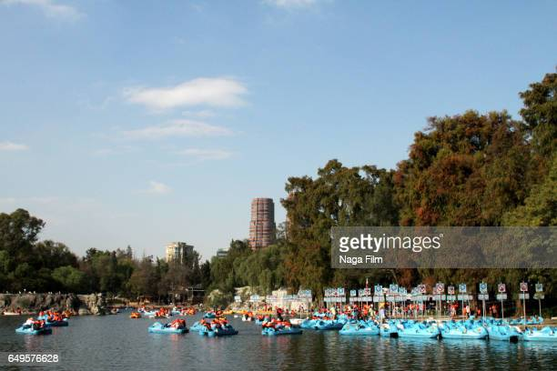 boats on the lake in chapultepec park, mexico city. - pedal boat stock pictures, royalty-free photos & images