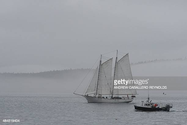 Boats sail through the mist on Mount Desert island in Bar Harbor Maine on August 12 2015 AFP PHOTO/ ANDREW CABALLEROREYNOLDS
