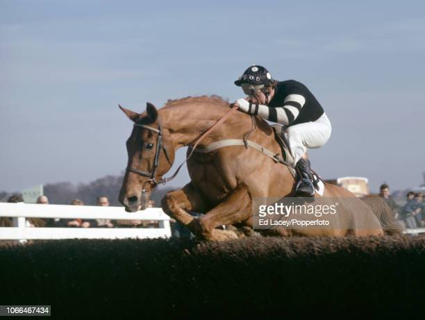 Bob Champion aboard Henry Tuffnut during the Manor Novices' Handicap at Kempton Park on 21st February 1975