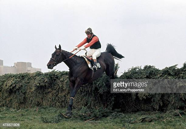 Bob Champion riding Manicou Bay in action during the Aintree Grand National at the Aintree Racecourse in Liverpool England on 5th April 1975