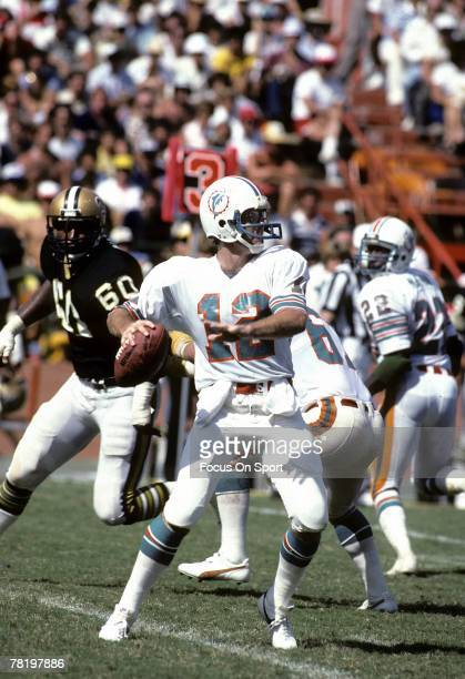 Bob Griese of the Miami Dolphins drops back to pass in a circa mid 1970's NFL game aginst the New Orleans Saints in Miami Florida Griese played for...