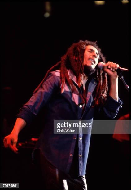 Bob Marley 1979 UCLA