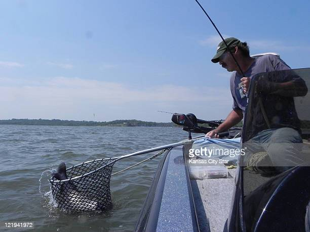 Bob Noah of Kansas City Kansas reaches to net a channel cat he caught at Perry Lake Noah is accustomed to catching big catfish on the flats at the...