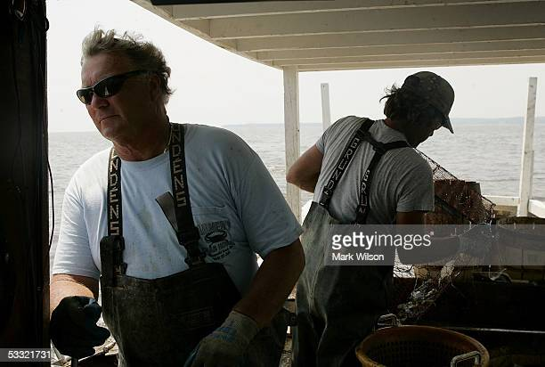 Bobby Abner along with Donnie Eastridge looks for one of his crab pots aboard the commercial crabbing boat Foxy Roxy on the Chesapeake Bay August 3...